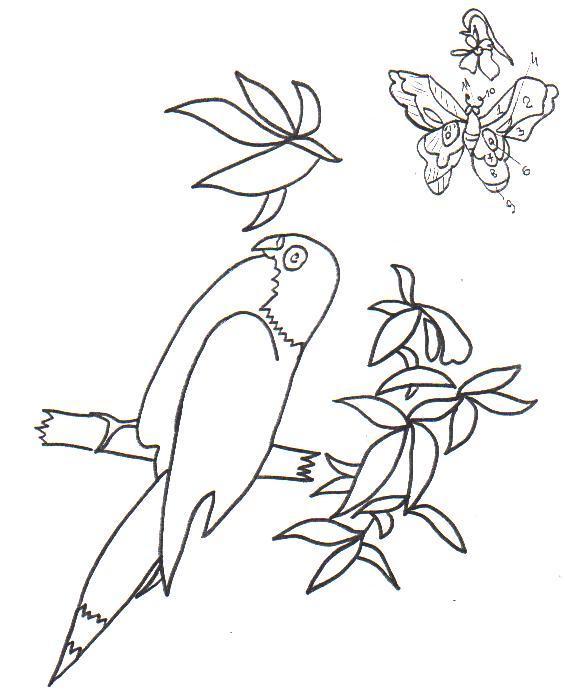 Рукодельки Попугай- идеи и схемы вишивки гладью