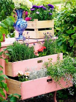 Идея  клумбы для красивого сада