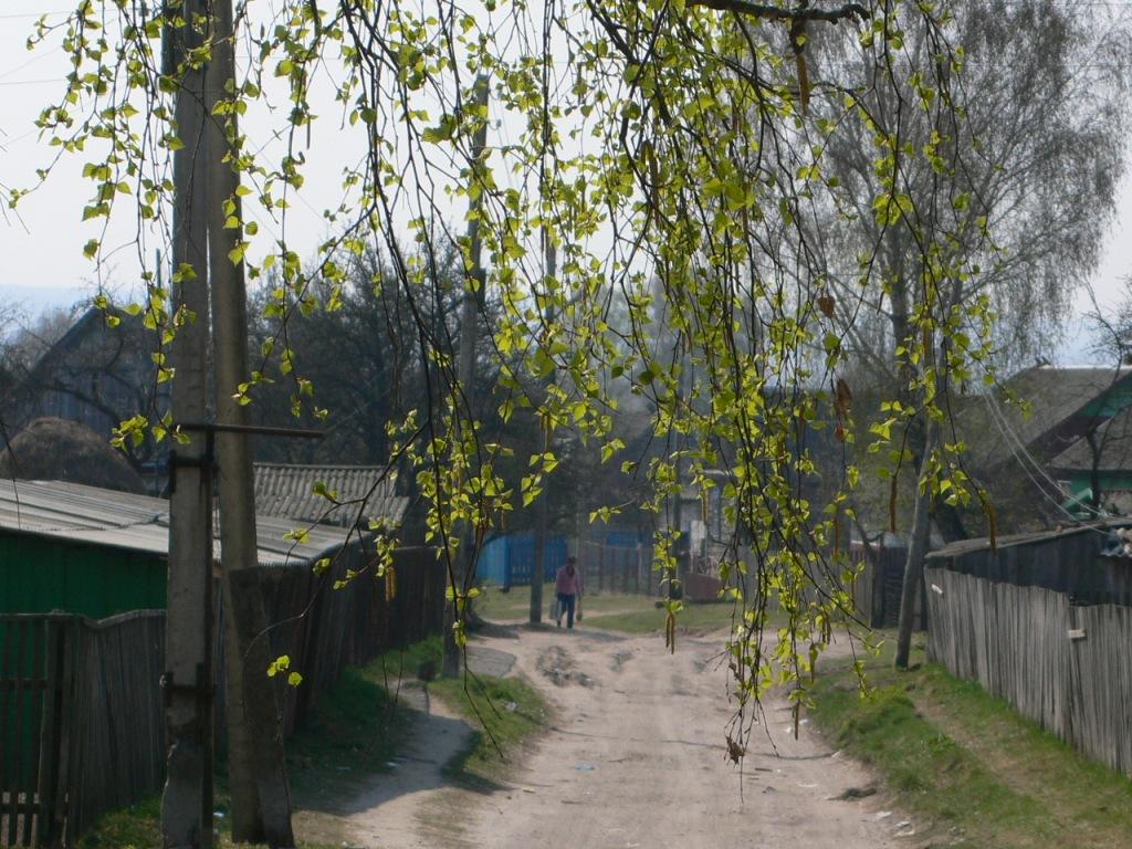 Переулок п.  Локоть