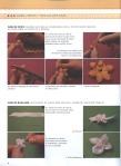Мои рукодельки Вышивка лентами Cintas1235632496