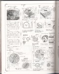 Мои рукодельки Книга по рукоделию Фото1741052806